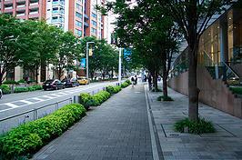 Artigo: calçadas arborizadas ganham destaque na primavera