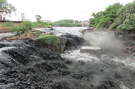 Água preta provoca matança de peixes no Tietê