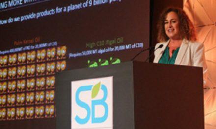 Rio de Janeiro discute marcas sustentáveis