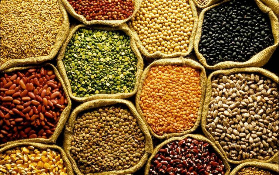 Resultado de imagem para produçao de grãos