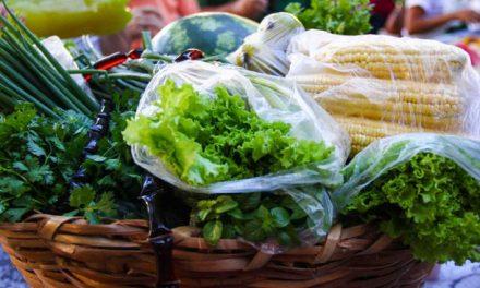 Brasil oferece 200 opções na feira mundial de orgânicos