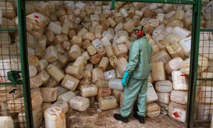 Embalagens de defensivos agrícolas têm destino correto