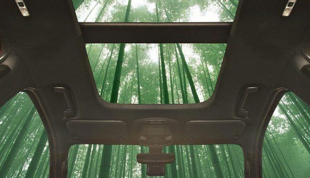Bambu no carro: pode ser melhor que metal