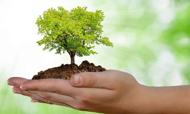 Um portal para discutir sustentabilidade