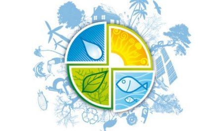 Prêmio de sustentabilidade para pessoas e empresas