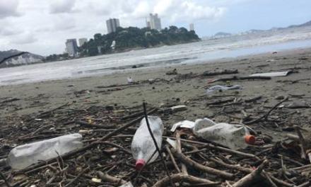 O plástico destruindo o meio ambiente