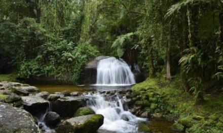 Fundação Toyota investe nas águas da Mantiqueira