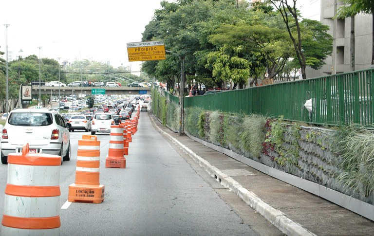 Avenida verde no lugar dos grafites