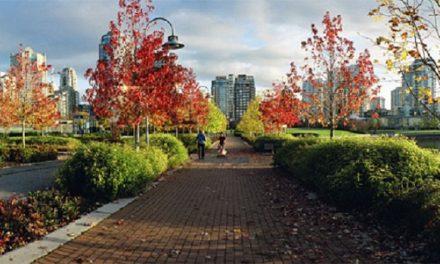 Cidades verdes são mais bonitas e saudáveis