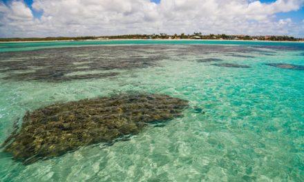 Praias, paisagens exuberantes e culto à natureza