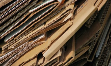 Indústria de papelão cresce no primeiro trimestre