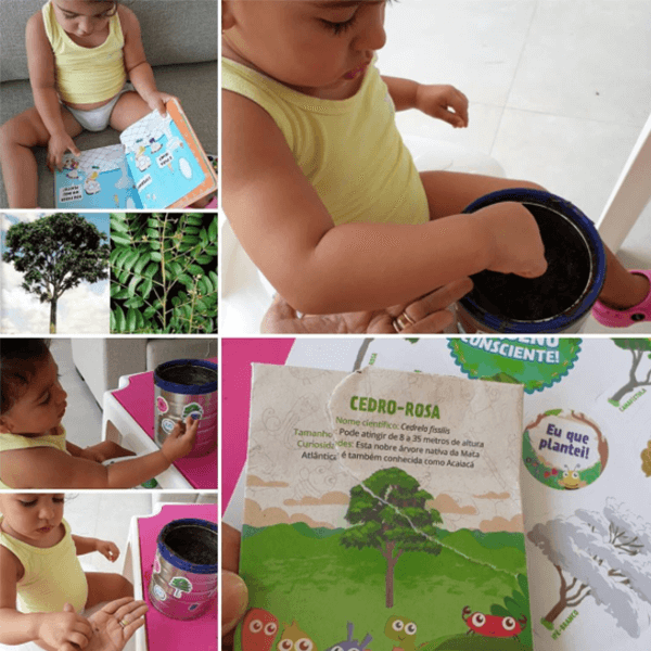 Educar desde a infância para o meio ambiente