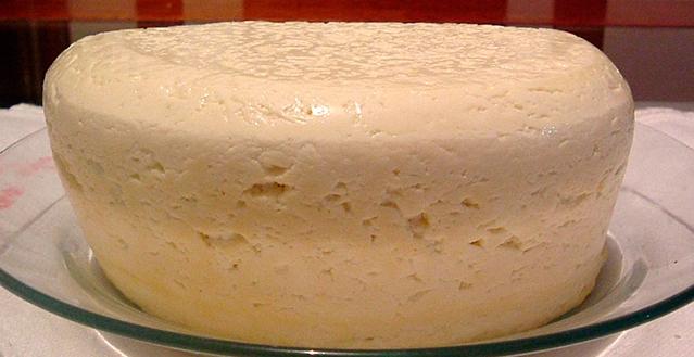 Bactérias dão segurança ao consumo de queijos artesanais
