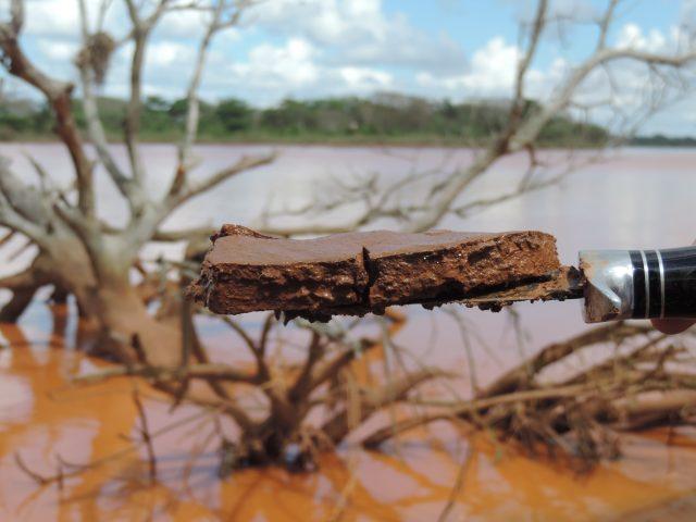 Lama da Samarco continua contaminando