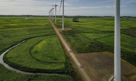Brasil comemora 16 GW de capacidade de energia eólica