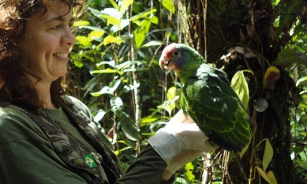 Jovens aprendem educação ambiental no Paraná