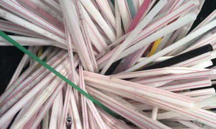 Câmara Municipal aprova fim de canudos plásticos em São Paulo