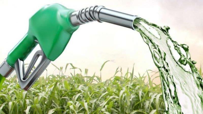 Escola da Cachaça ensina a fazer etanol