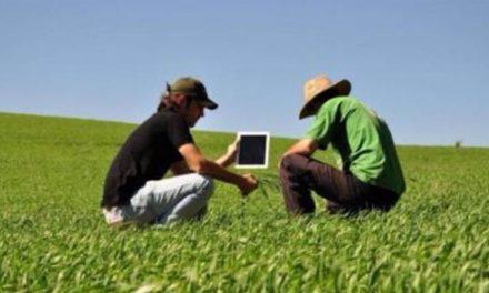 Apps facilitam agricultura e pecuária