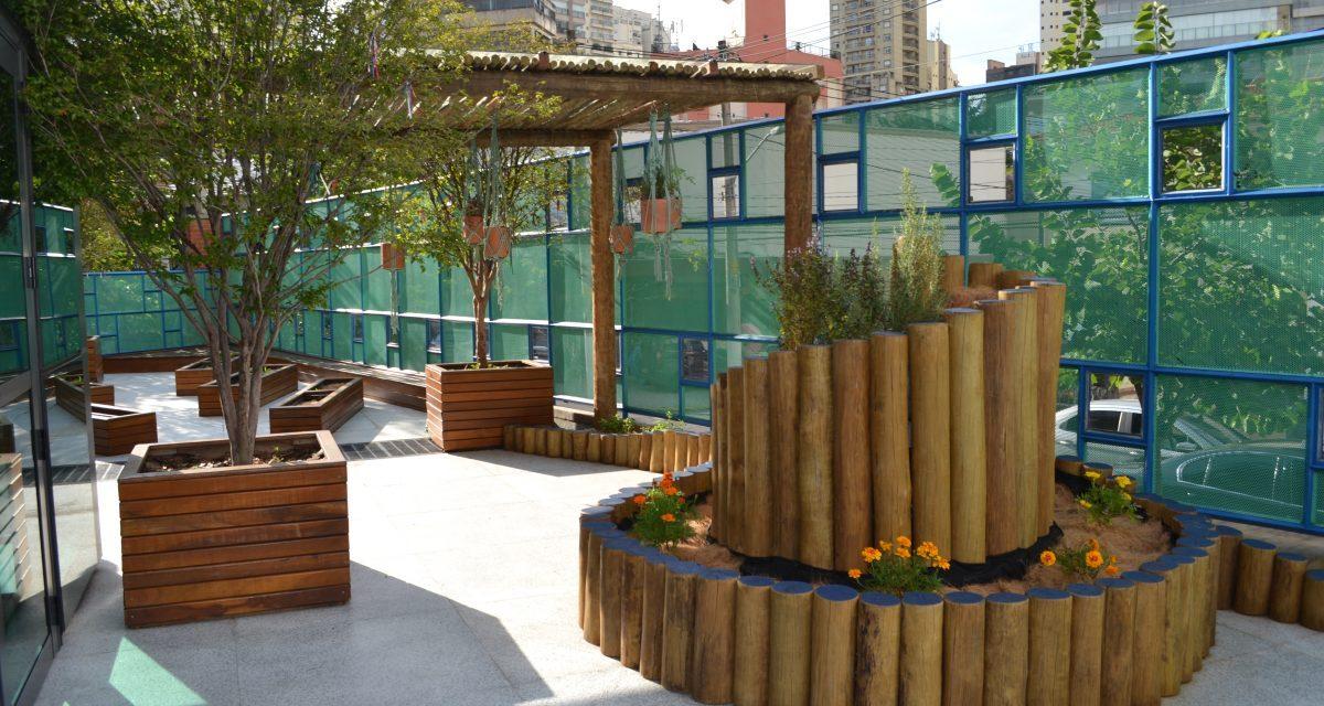 Escola em São Paulo cria jardim pedagógico