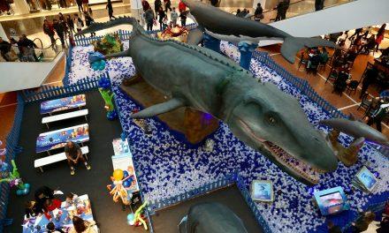 Exposição tem animais marinhos em tamanho real