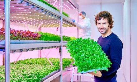 Fazenda vertical usa LED para melhorar a produção