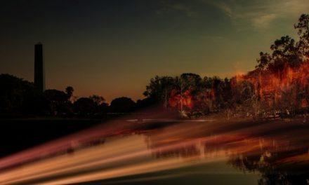 Incêndio no Ibirapuera no Dia da Amazônia