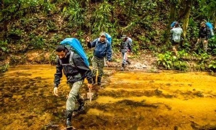 Reserva no Vale do Ribeira reabre para o Ecoturismo