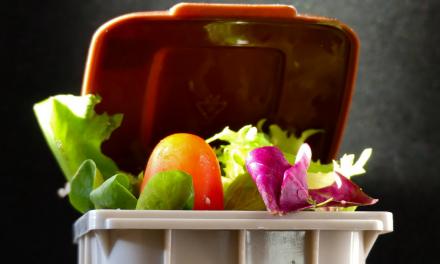 Evitando o desperdício de comida