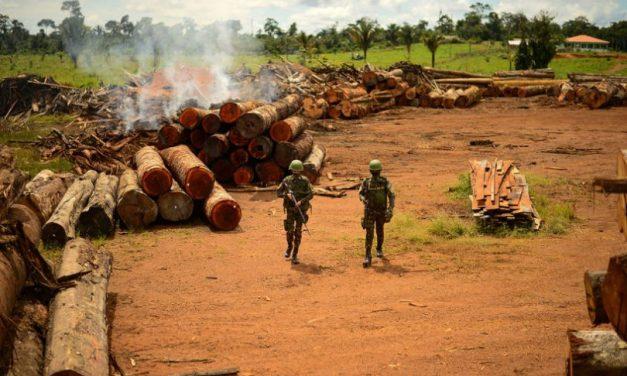 Verba da proteção da Amazônia vai para quartéis