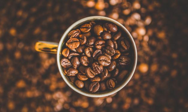 Seminário discute a cadeia de valor do café